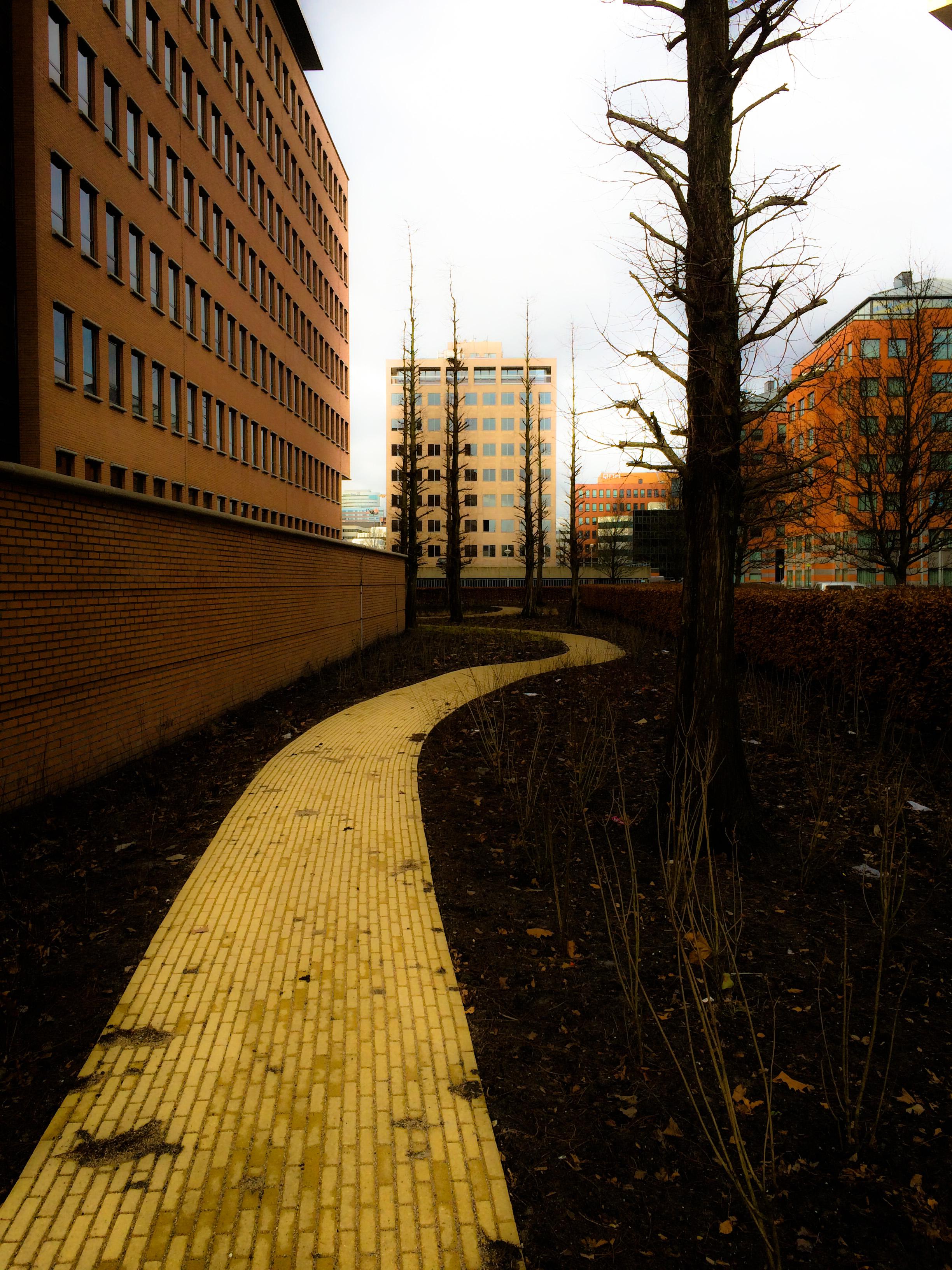 Path Through Buildings