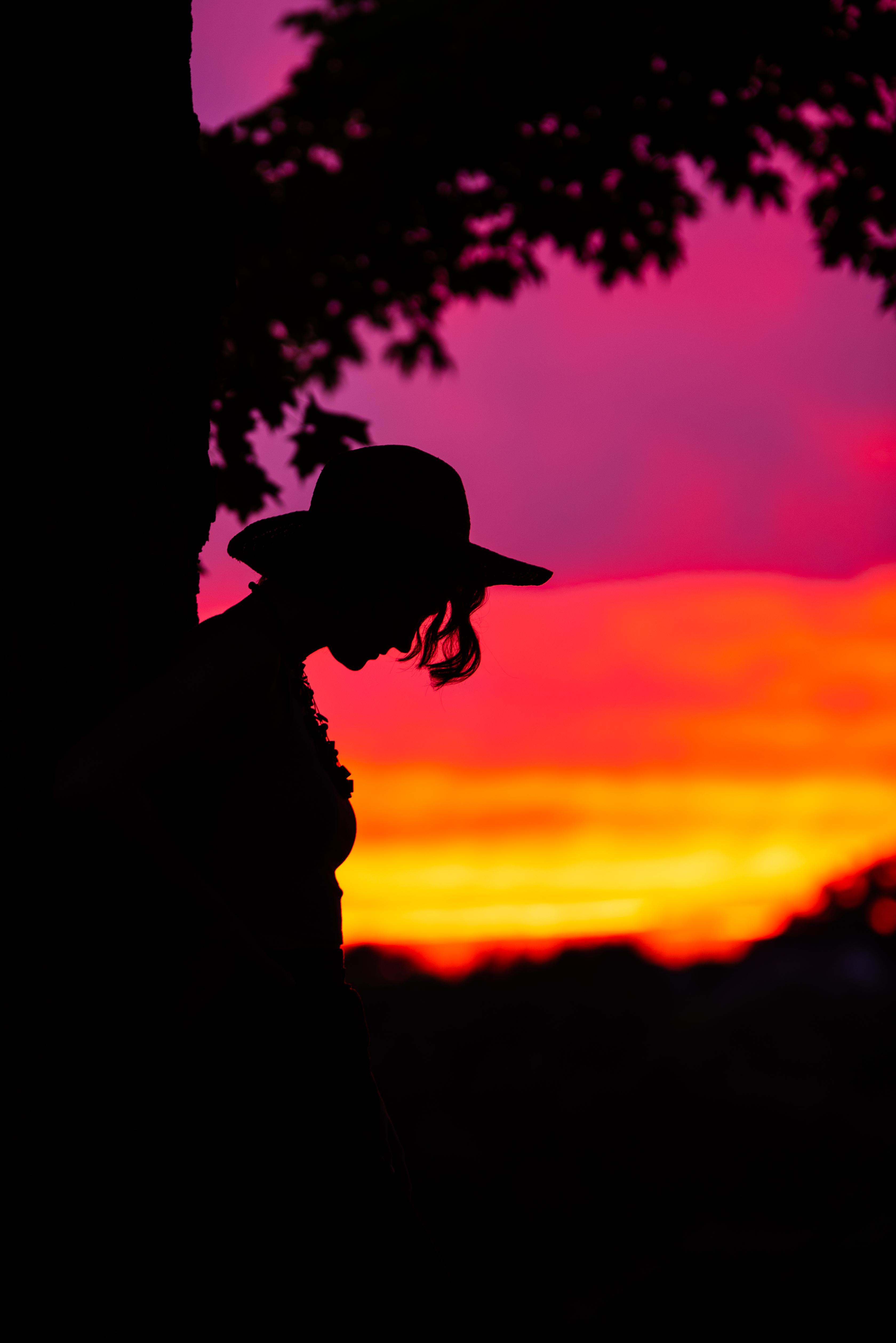 Olivia's Sunset