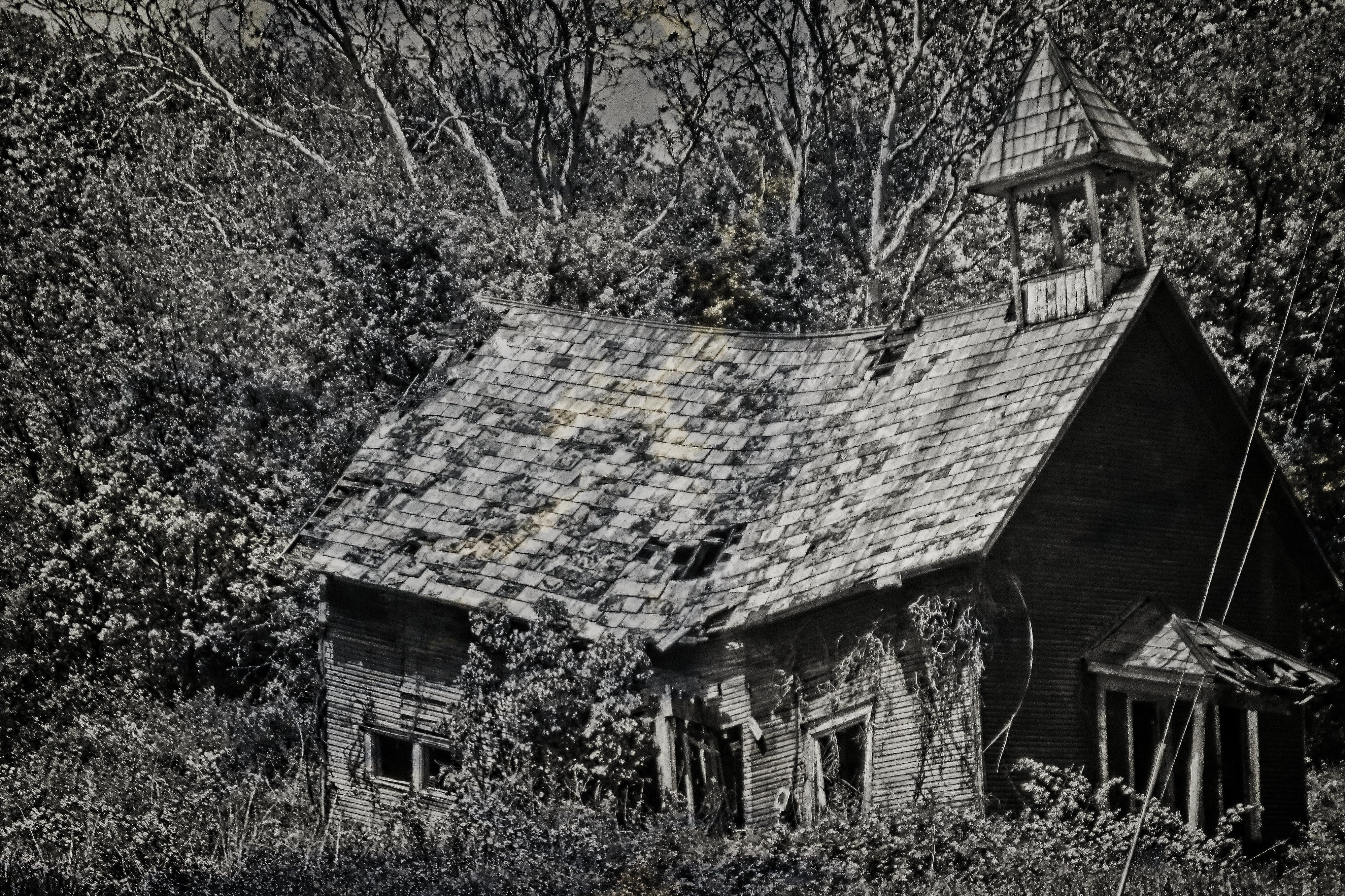 Abandoned schoolhouse (monotone)