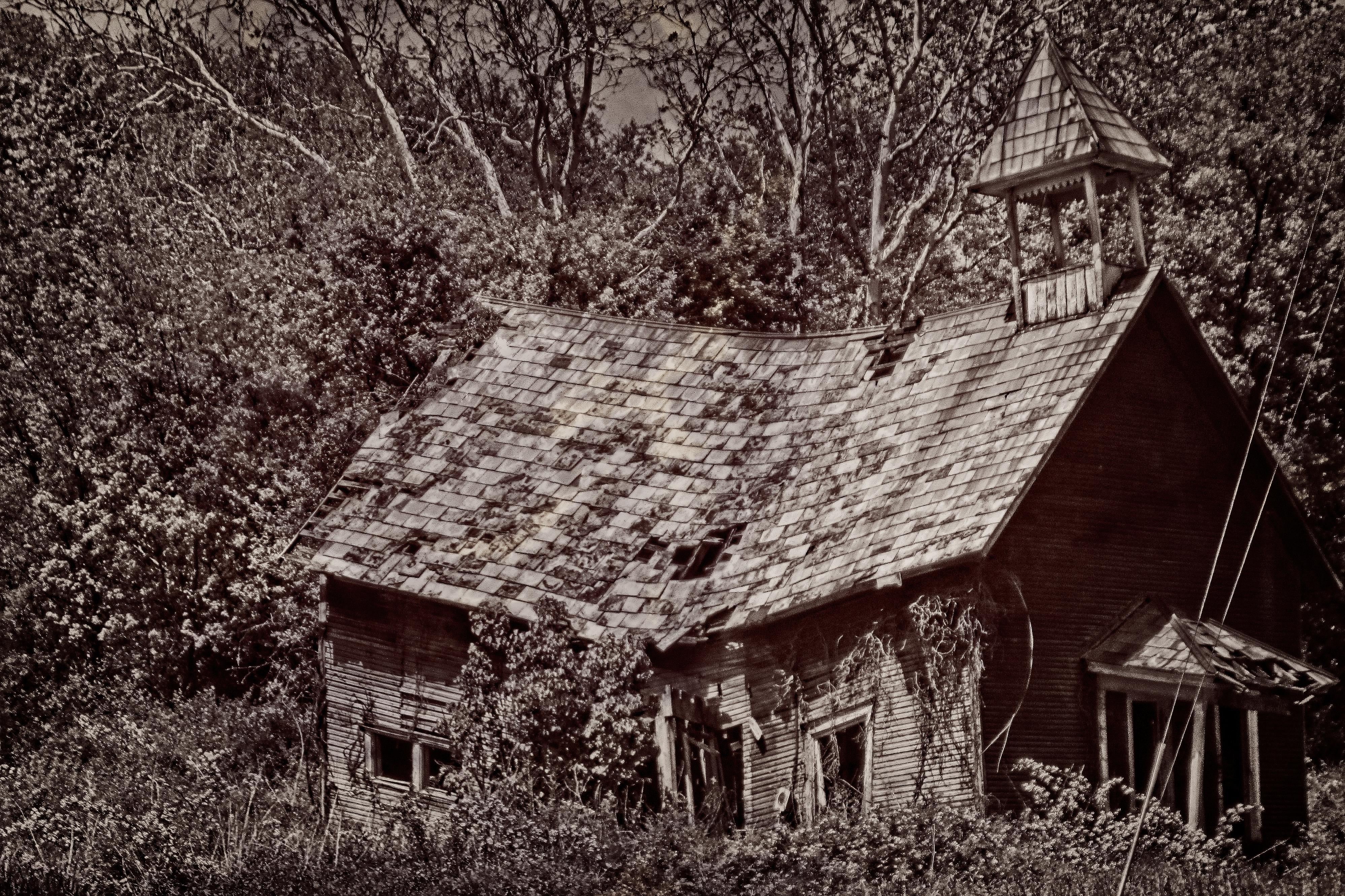 Abandoned schoolhouse (duotone)
