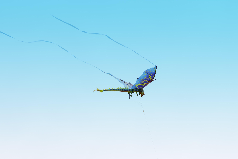 Dragon Flies Overhead