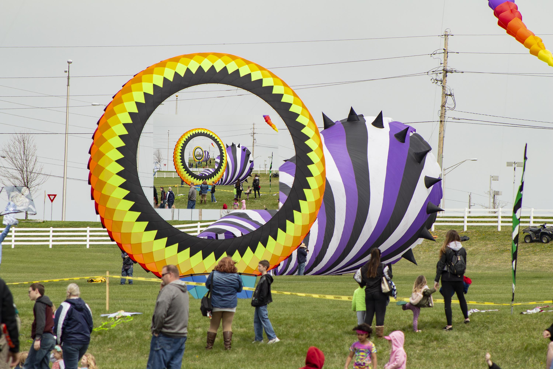 KITES, Kites, kites...