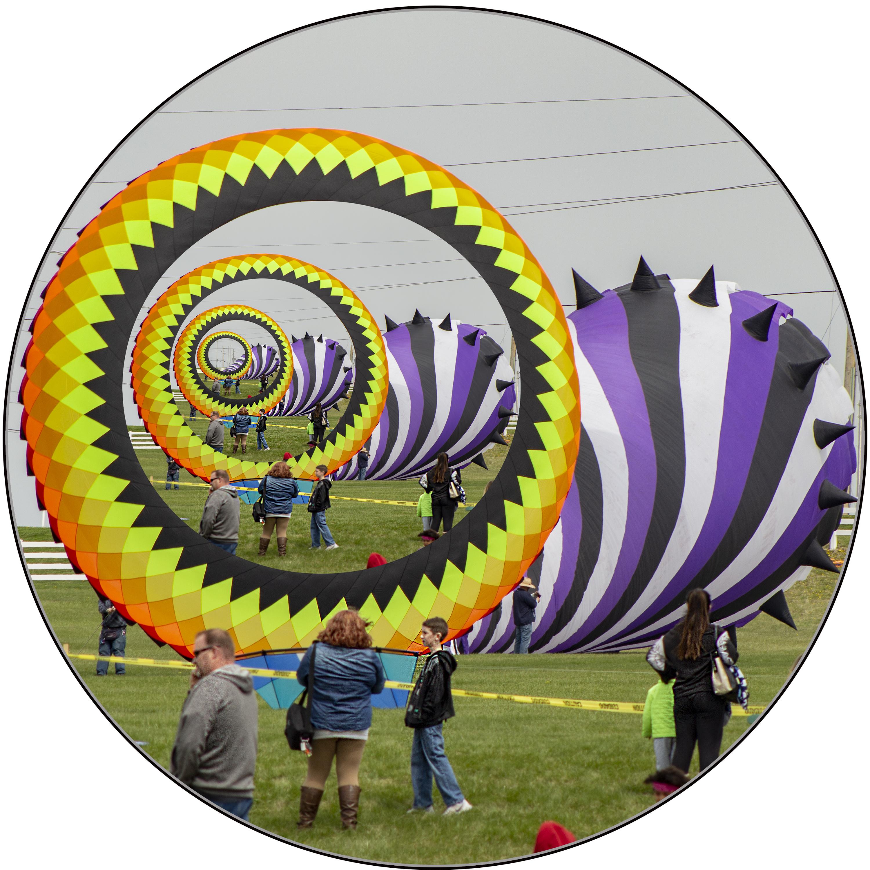 Circular Kites Droste Effect