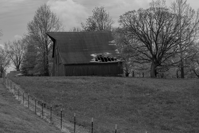 Old Barn B&W