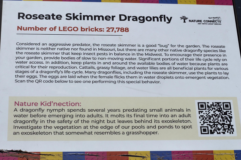 Lego Dragonfly Factsheet