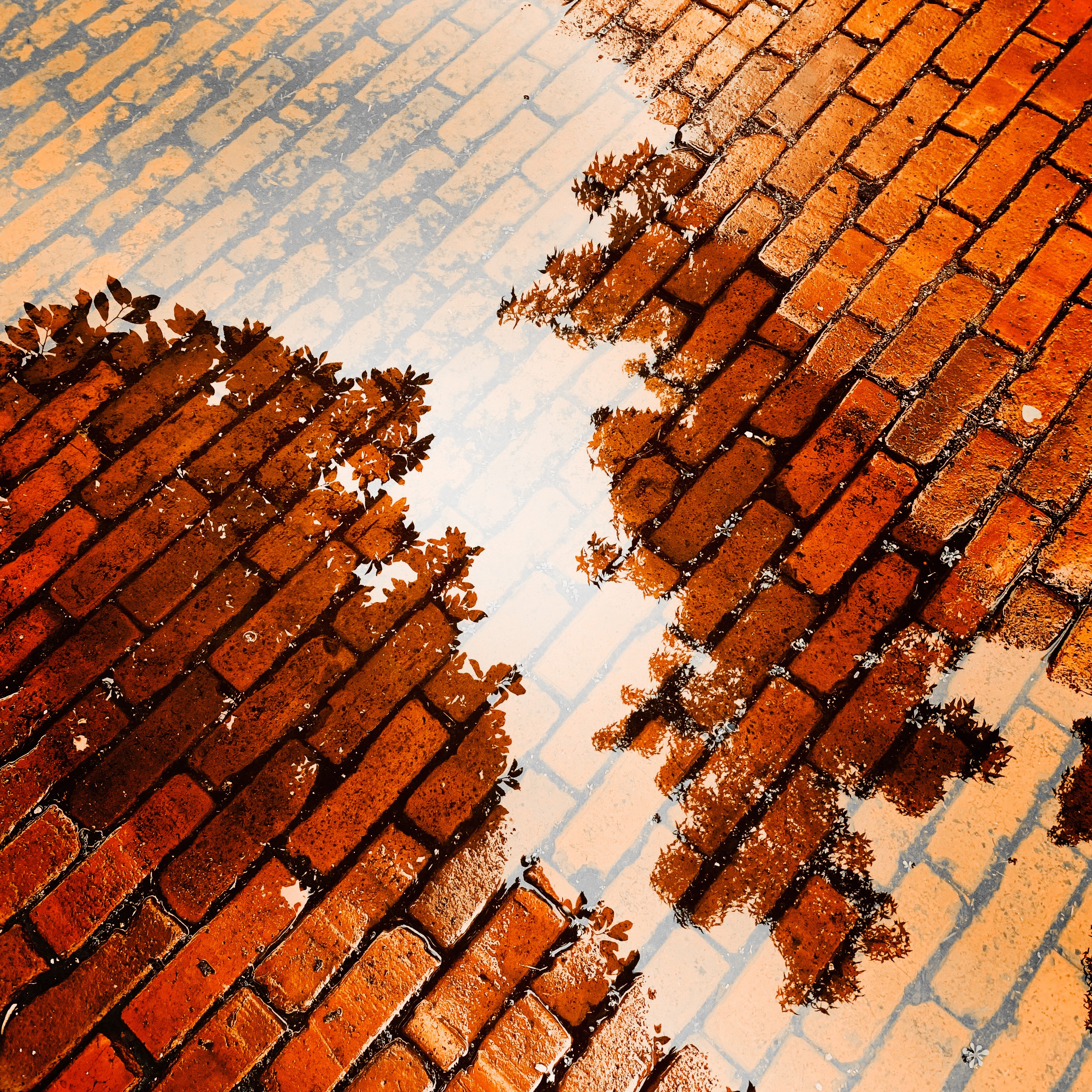 Reflections on bricks and puddles, clouds and trees, ups and downs, lines and weaves