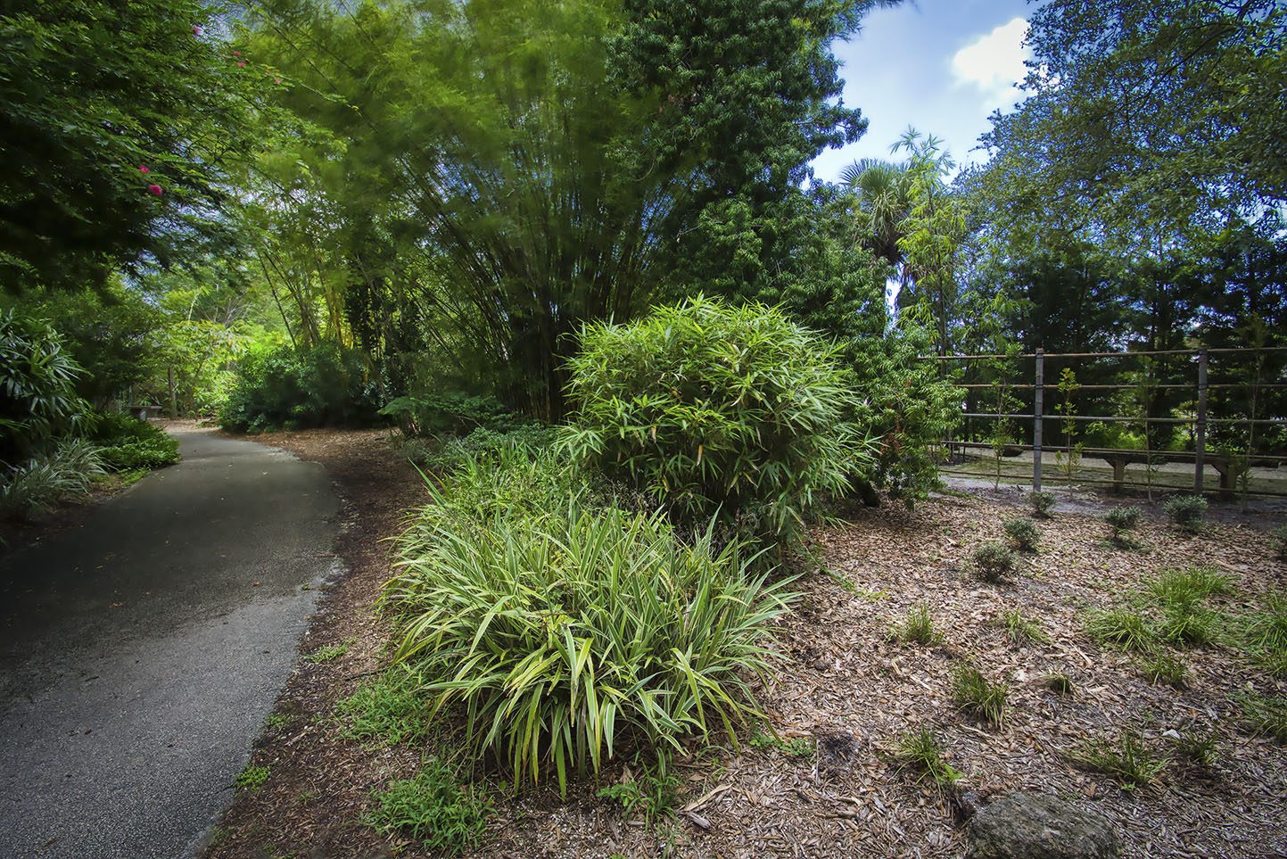 Deerfield Beach Arboretum, Japanese garden