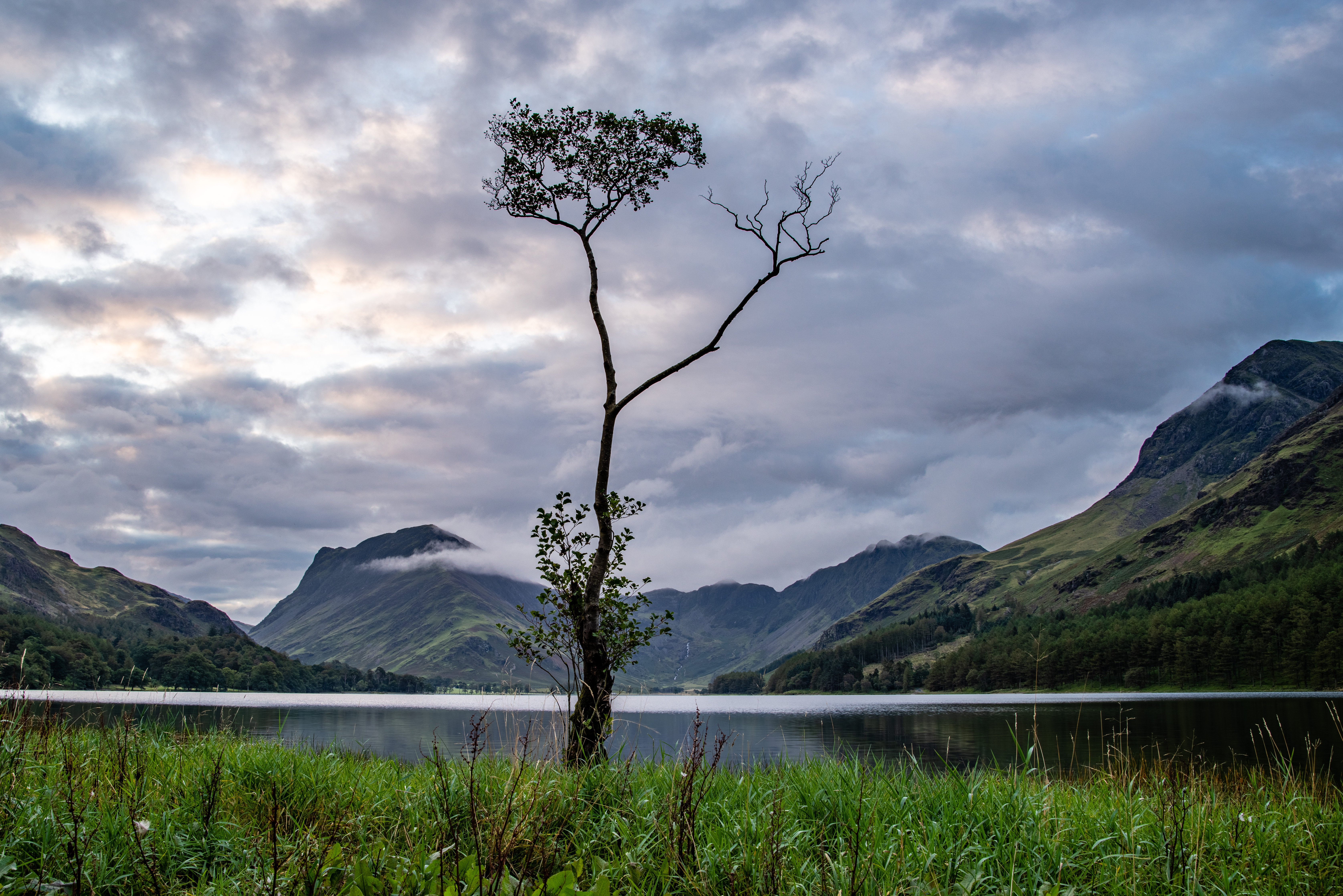 Butteremere is one of the prettiest lakes in the English Lake District and this lone tree is one of the most photographed. When I arrived to take my photo I had hoped for  light cloud and a mirror like lake: the weather forecast had been promising. In fact there was almost 100% cloud cover and a breeze that was stirring up the water. This shot was the best I could manage. The cloud didn't clear until hours later.