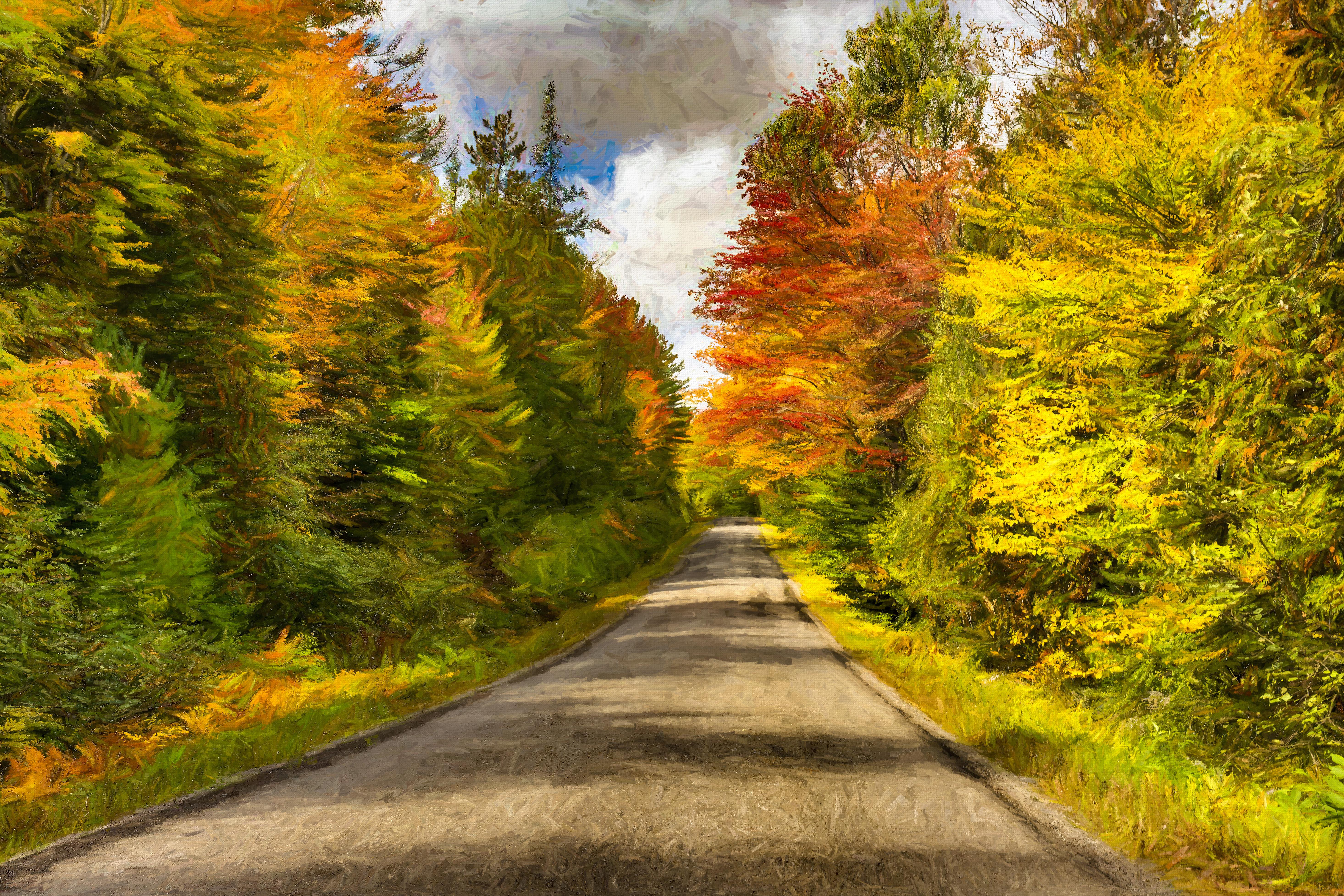 Fall drive, NE Maine. Topaz Effects