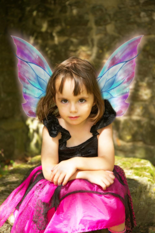 Puzzled Fairy
