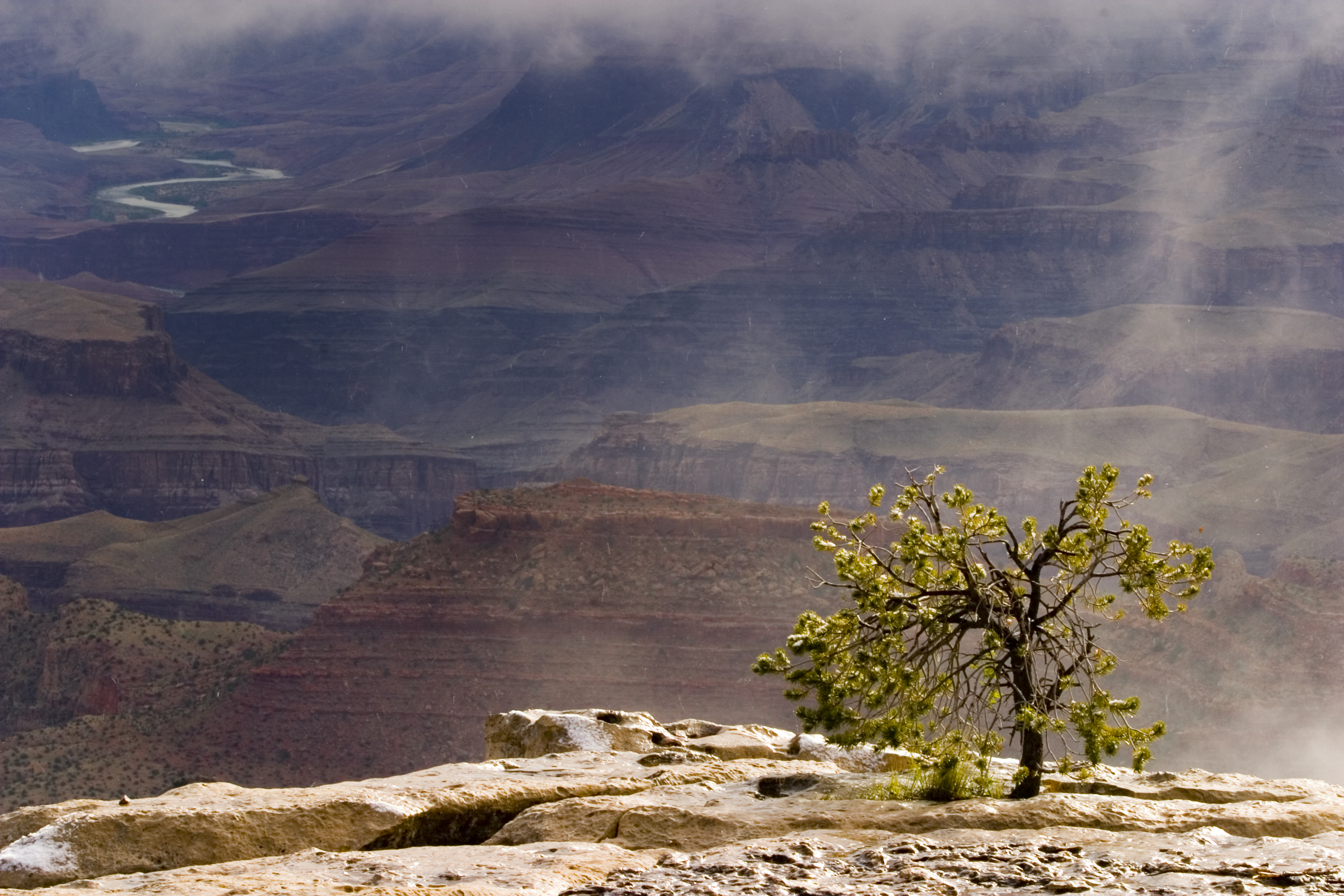 Grand Canyon in May